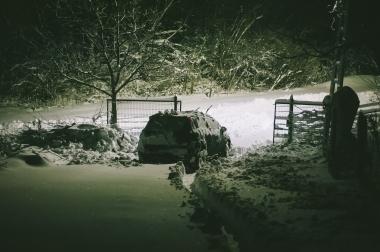 mofteescu winter with tudor and paun-9